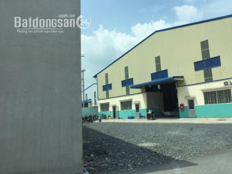 Cần thuê Nhà Xưởng, Kho Bãi Xã Lương Bình, Huyện Bến Lức