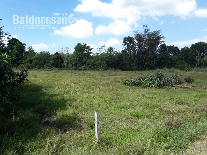 Mua đất riêng, Đất ở các loại Đường Bàu Cạn, Xã Bàu Cạn, Huyện Long Thành