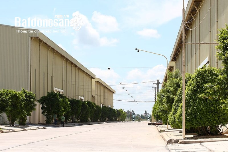 Cho thuê đất riêng, kho xưởng Xã Trường Xuân, Huyện Tháp Mười