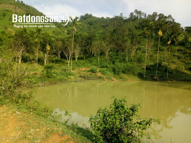 Bán 10 ha đất tại cao tốc huyện kỳ sơn tỉnh hòa bình