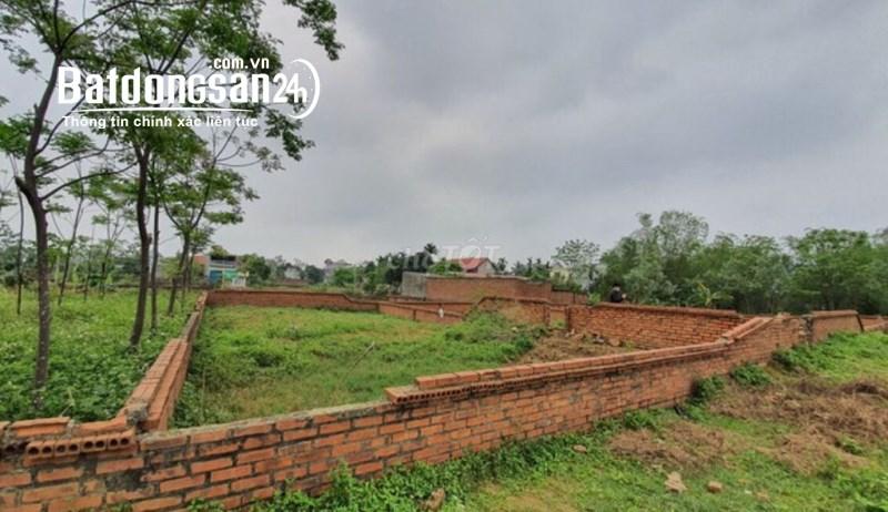 Cần bán đất tại Xã Bình Yên, Huyện Thạch Thất, Hà Nội