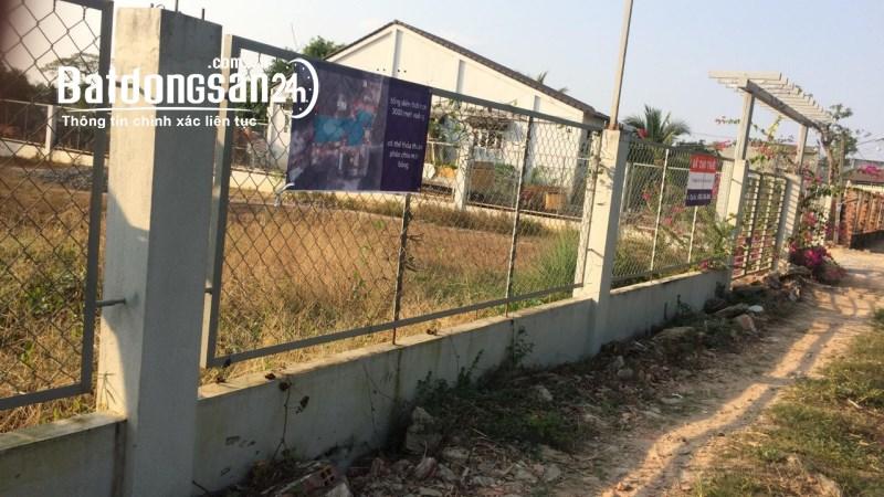 Cho thuê đất riêng, kho xưởng Thị trấn Hòa Thành, Huyện Hoà Thành