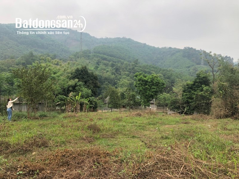 BÁN GẤP LÔ ĐẤT VƯỜN 8.000M2 - 1,5 tỷ Ngõ 195 Võ Nguyễn Giáp, Lương Sơn