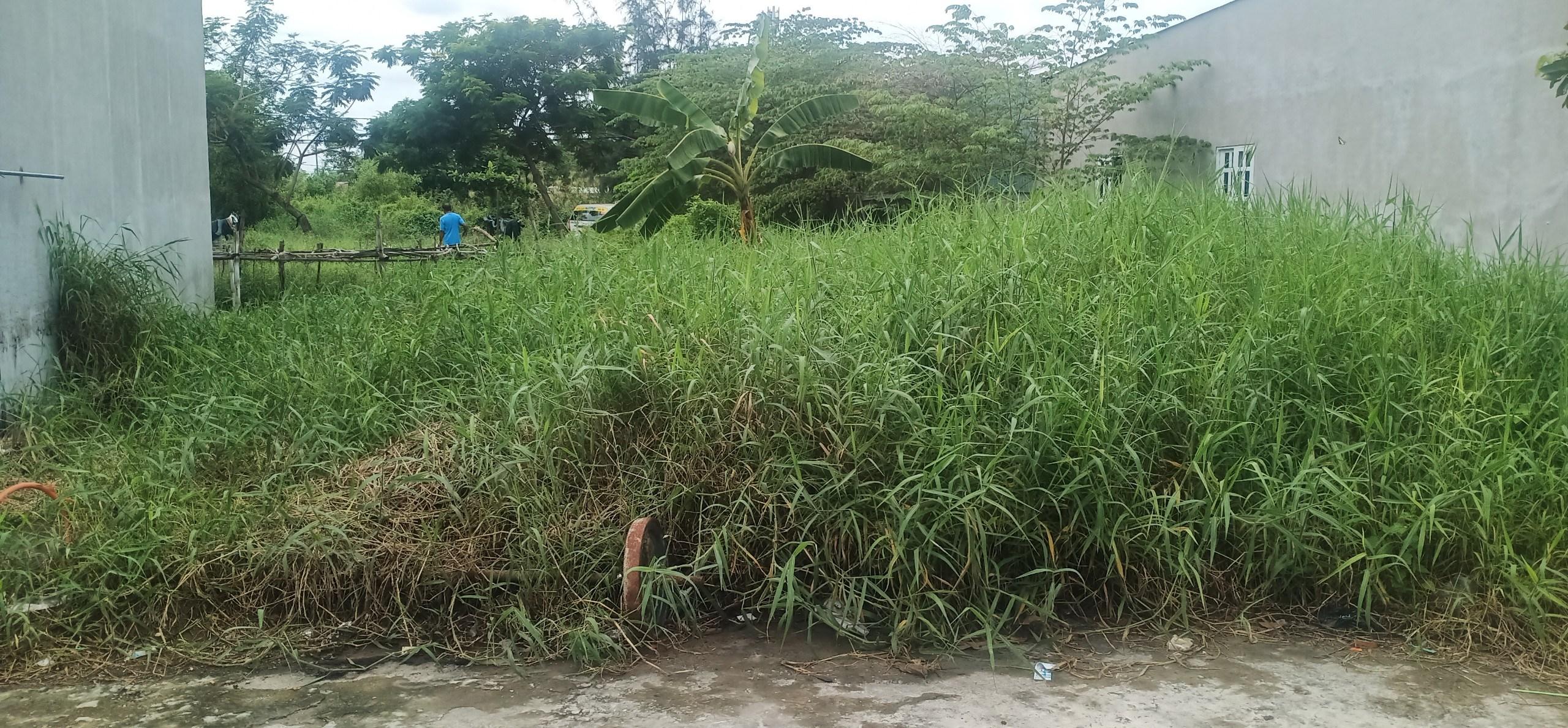Bán đất Đường Nguyễn Văn Tạo, Phường Hiệp Phước, Huyện Nhà Bè