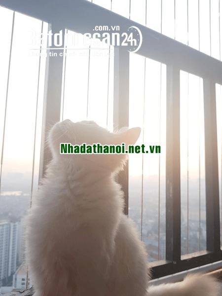 Chính chủ bán căn hộ chung cư HH1B khu đô thị Linh Đàm, Quận Hoàng Mai