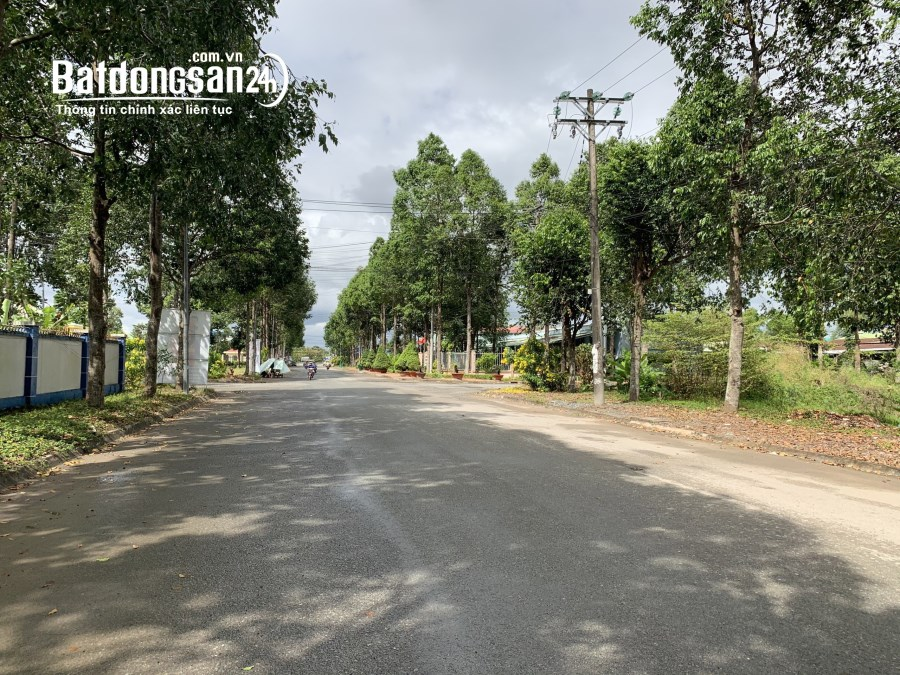 Cho Thuê 7.300m2 Đất Làm Nhà Xưởng Tại - Tp. Vị Thanh - Hậu Giang