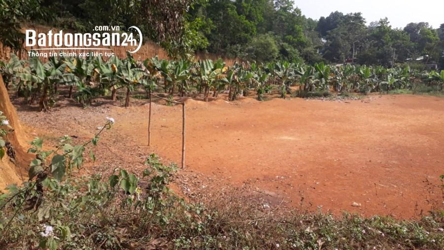 Bán đất Đường 21, Thị trấn Lương Sơn, Huyện Lương Sơn