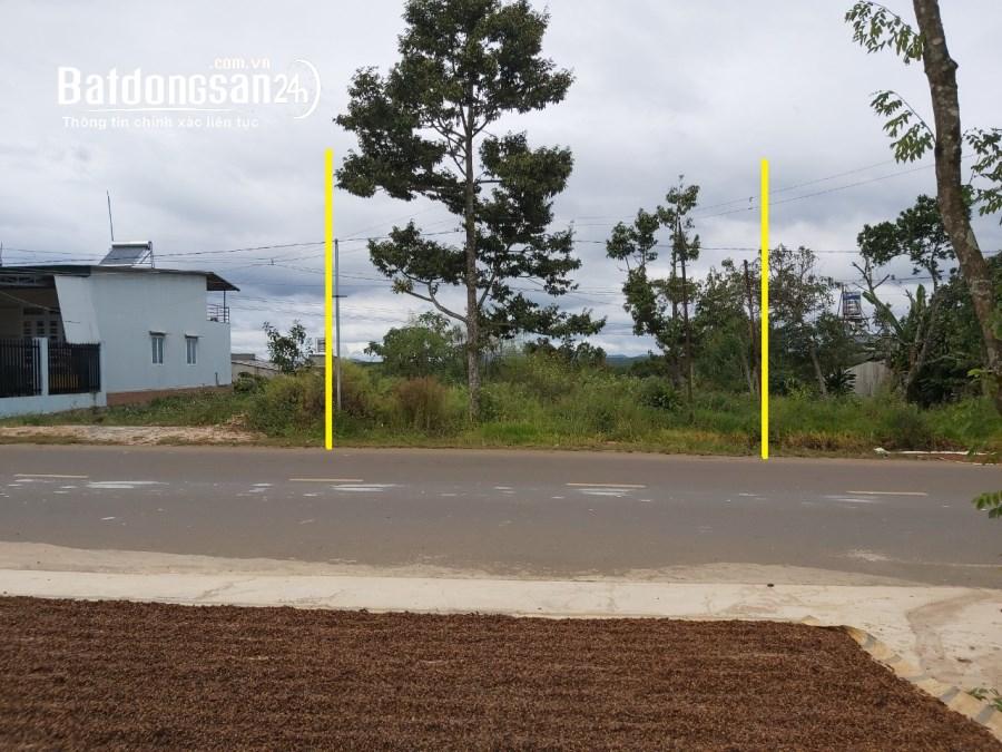 Bán 256m2 đất mặt tiền đường nhựa rộng 32m tại TP Bảo Lộc, Lâm Đồng
