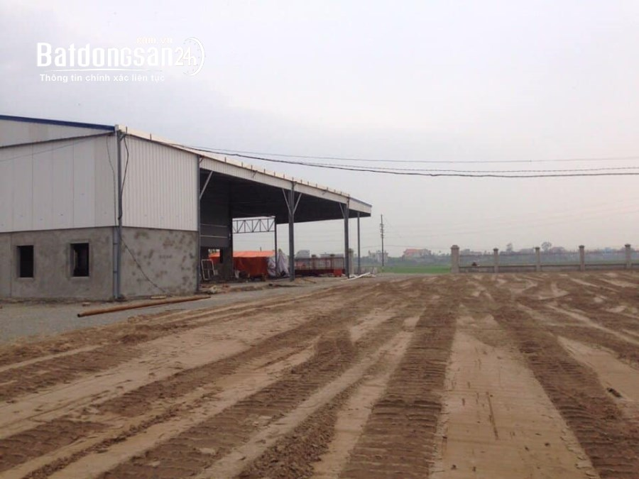 Bán đất Đường 10, Xã Mỹ Trung, Huyện Mỹ Lộc