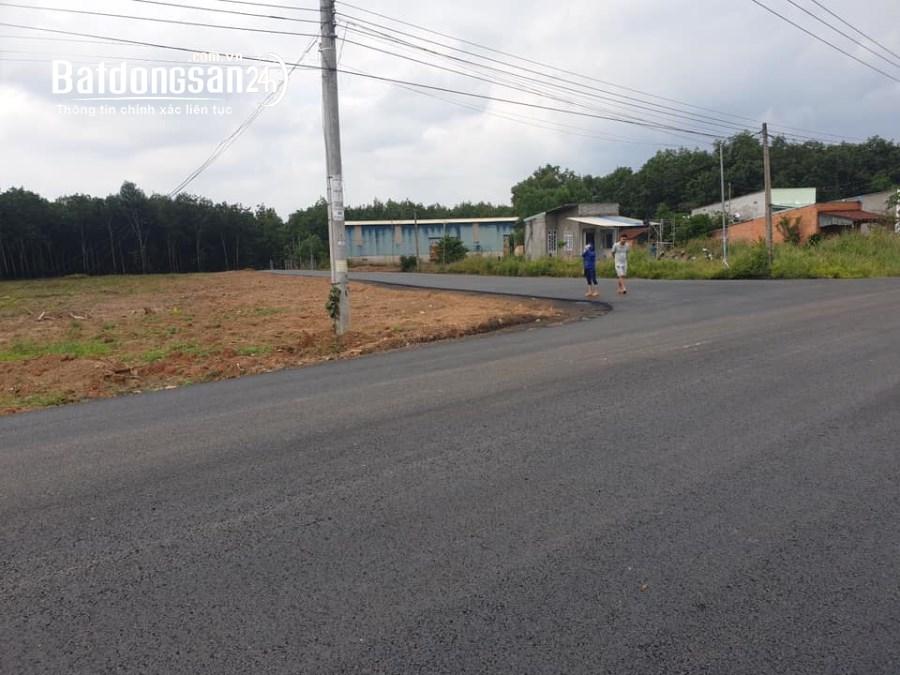 Đất huyện chơn thành đầu tư sinh lời 570 triệu