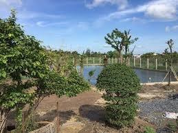 2350m2 đất gần trạm thu phí Mỹ Lộc Nam Định bán gấp.