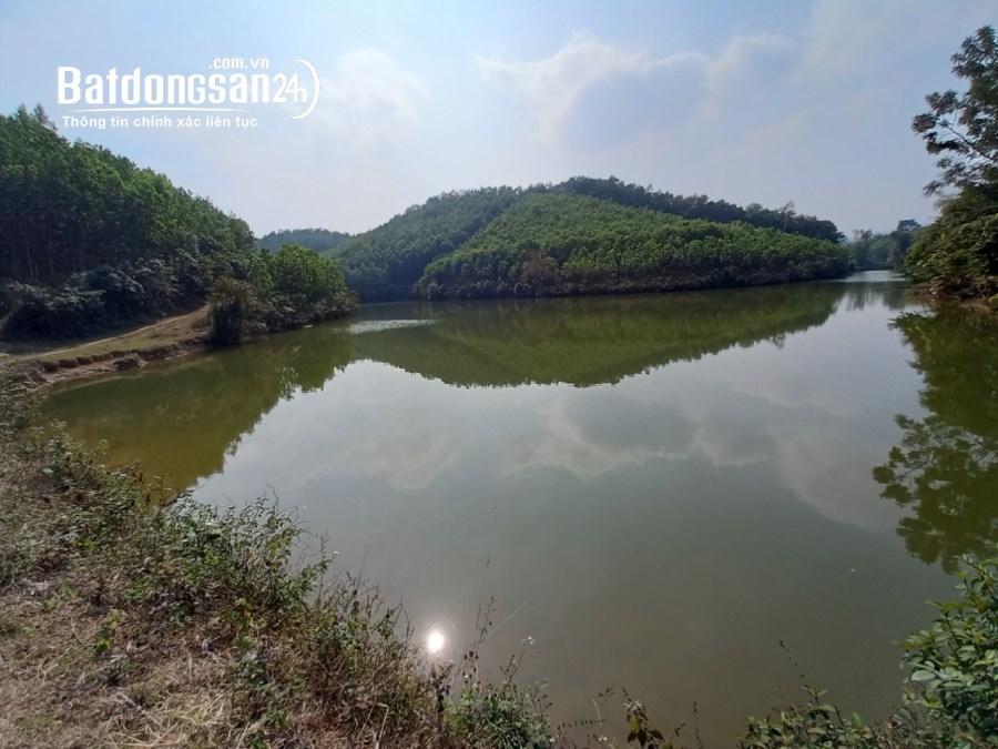 Bán đất Kim Bôi 5ha, bám hồ siêu đẹp, giá rẻ giật mình