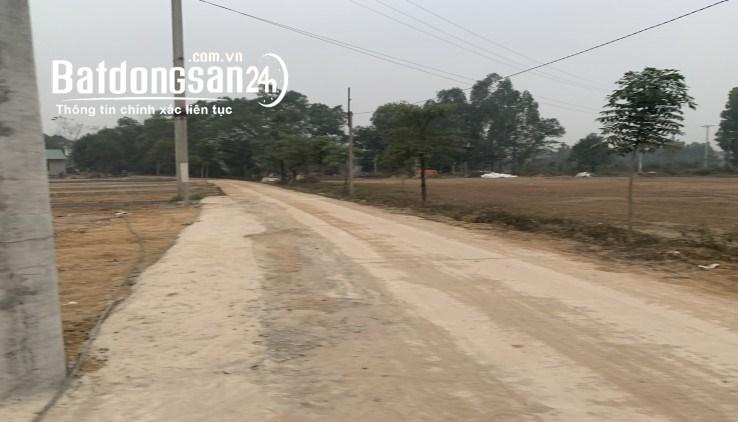 Bán đất Quốc Oai phân lô mới ra lò tại xã Hòa Thạch, giá rẻ đầu tư