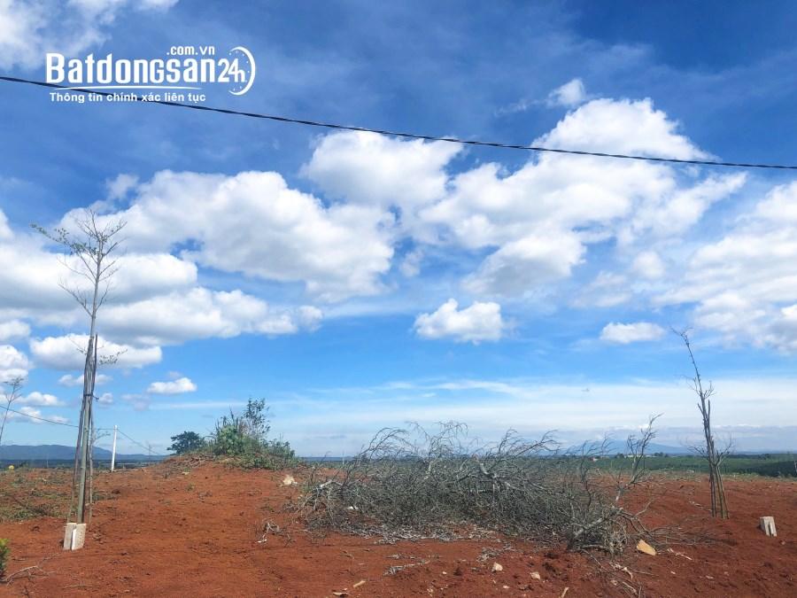 Bán đất nền phân lô Đường Lý Thái Tổ, Xã Đam Bri, Tp Bảo Lộc