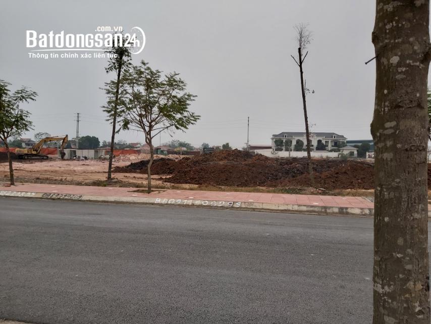 Bán đất nền phân lô Chí Linh Palm City, Đường Quốc Lộ 37, Huyện Chí Linh