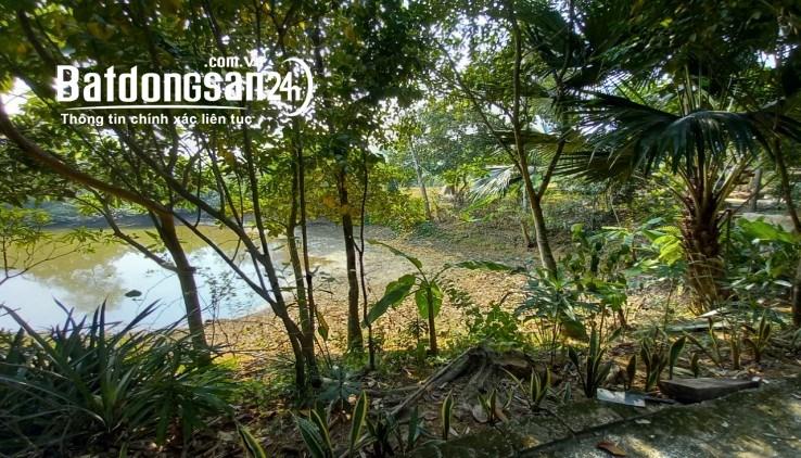 Bán đất Kim bôi 5000m2 full thổ cư, gần đường QL cực hiêm, giá rẻ đầu tư