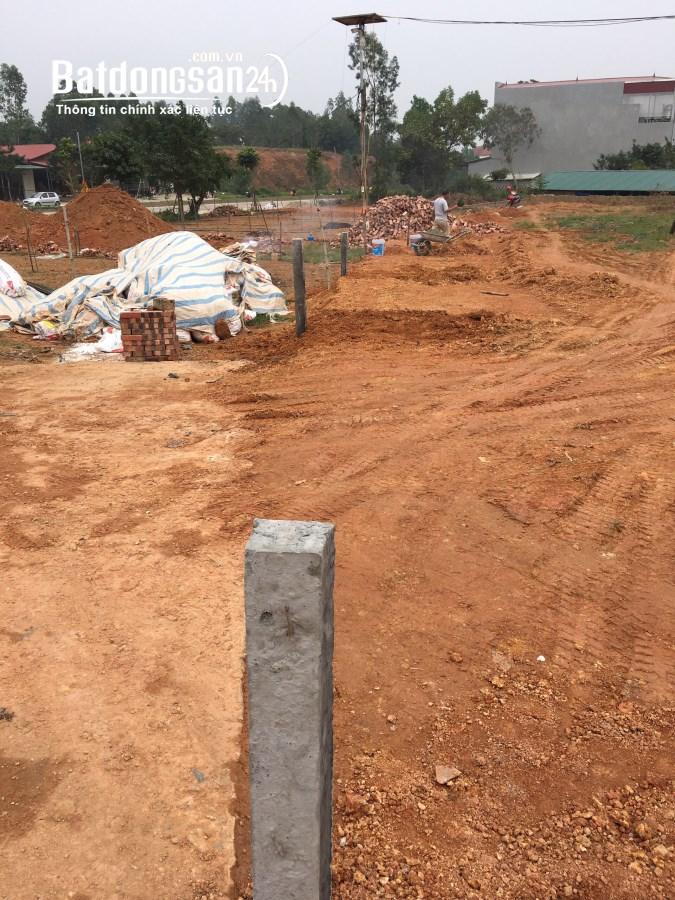 Bán lô đất 2520m2 tại Hoàng Hoa, Tam Dương, Vĩnh Phúc