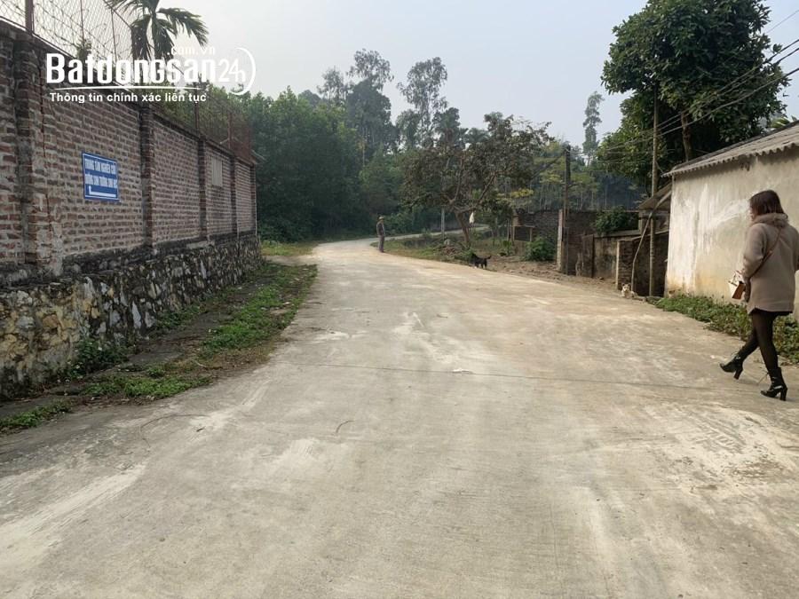 Bán đất làm nhà sưởng - nghỉ dưỡng cuối tuần tại Lương Sơn - Hòa Bình
