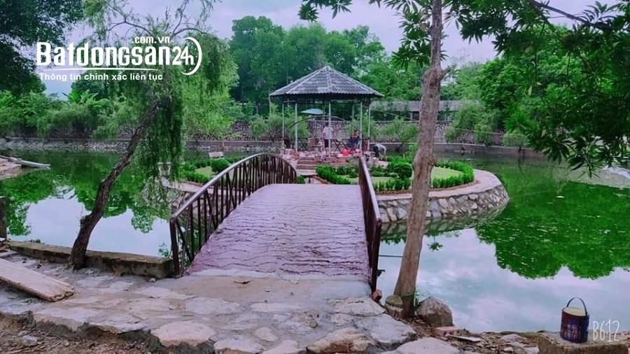 Bán đất Đường 21, Xã Cư Yên, Huyện Lương Sơn