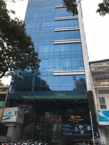 Bán tòa 210m2, 11 tầng, 2 hầm phố Kim Mã, kinh doanh bậc nhất Quận Ba Đình