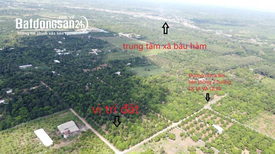 Cần bán mãnh vườn cây ăn trái - Huyện Thống Nhất ...!
