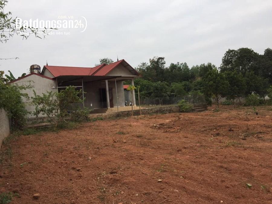 Bán đất Xã Thanh Lâm, Huyện Lục Nam