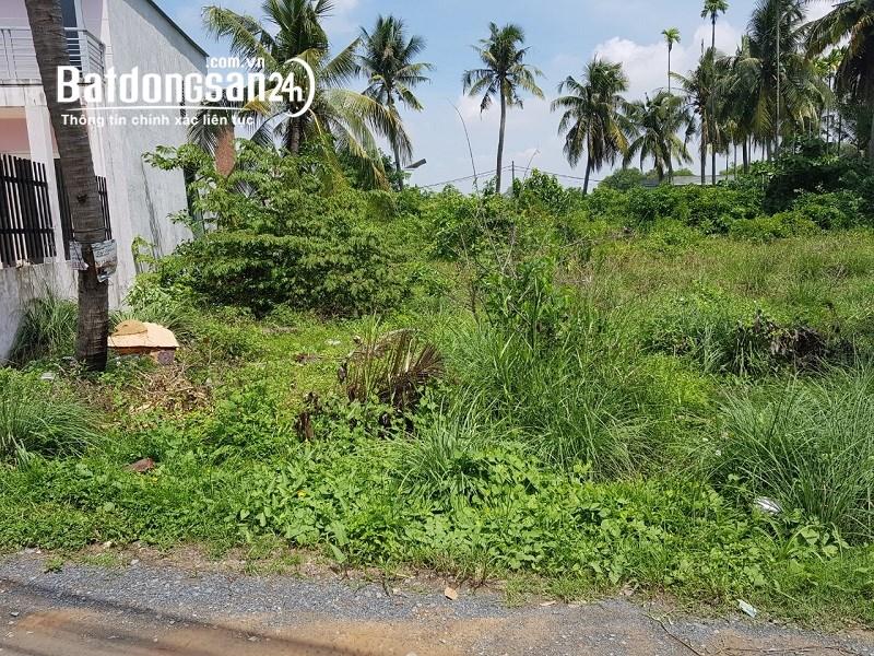 Bán gấp 300m2 đất vườn  Nam Định