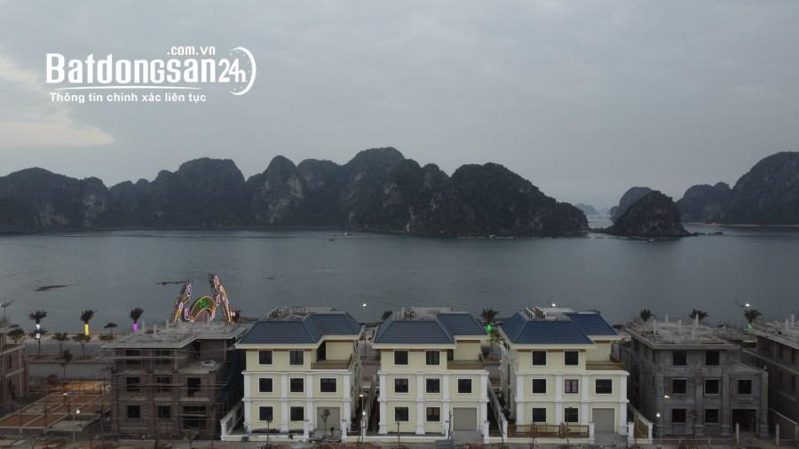 bán đất ven biển dự án green dragon city