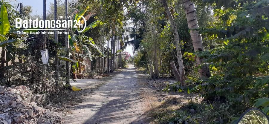 Bán đất Đường Phạm Hùng, Phường 5, TP Sóc Trăng