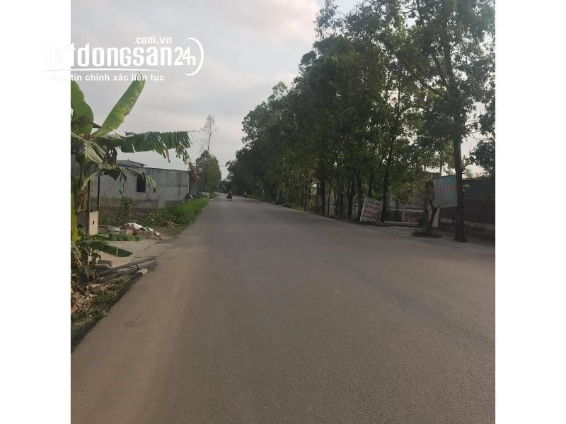 Bán đất Đường 477, Xã Gia Tân, Huyện Gia Viễn