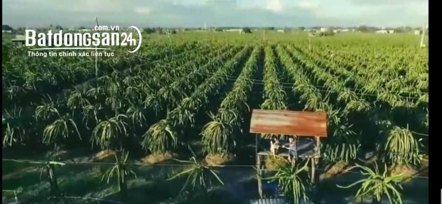 Bán 4578m2 đất nông nghiệp hồng thái 320tr sổ có đường Lh 0938677909