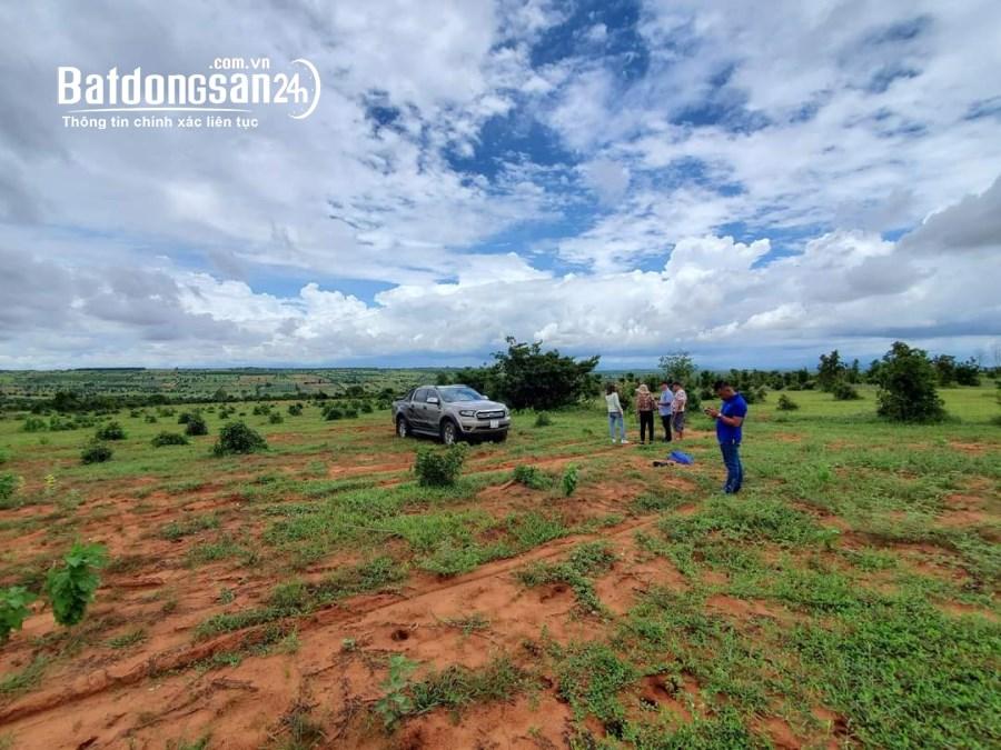 Bán đất nông nghiệp Bình Thuận SHR 33.899m2, bao chi phí công chứng.