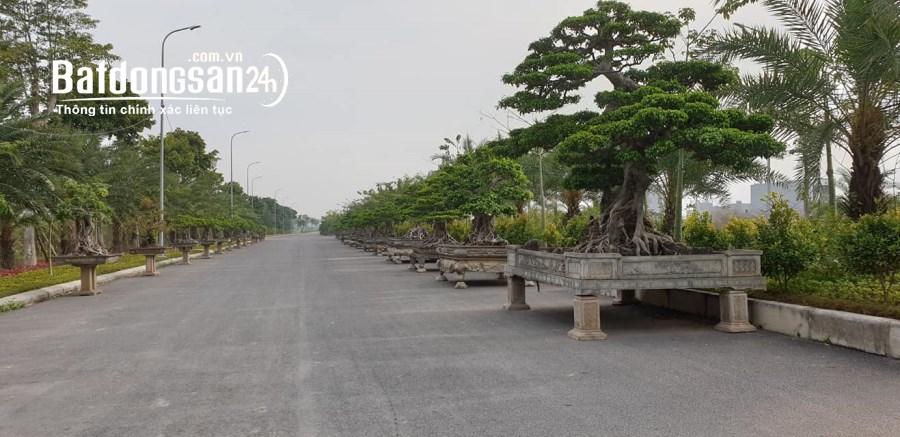 Bán đất Nam Hồng Garden, Đường Nguyễn Văn Cừ, Thị xã Từ Sơn