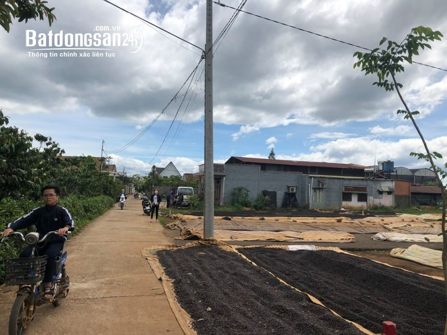 Mua đất riêng, Đất ở các loại Đường Nguyễn Văn Cừ, Phường Lộc Phát, Tp Bảo Lộc
