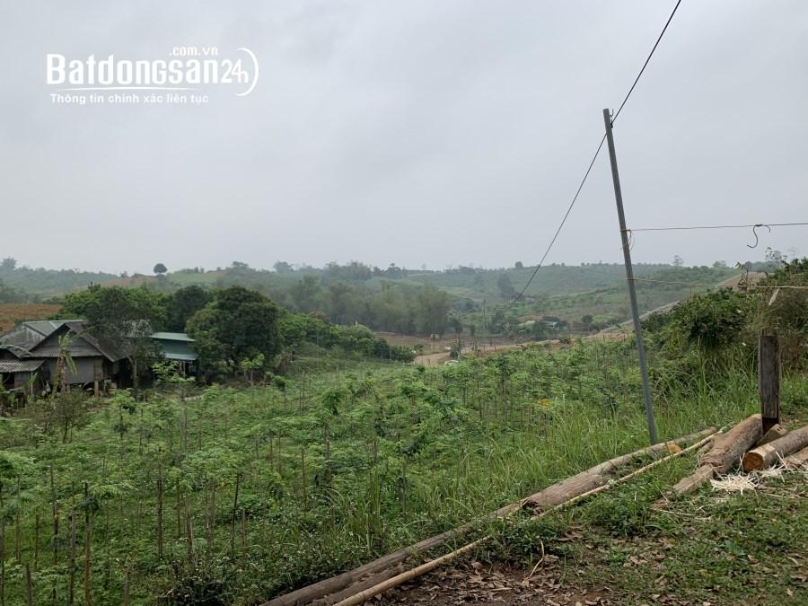 Bán đất Xã Tân Phong, Huyện Cao Phong