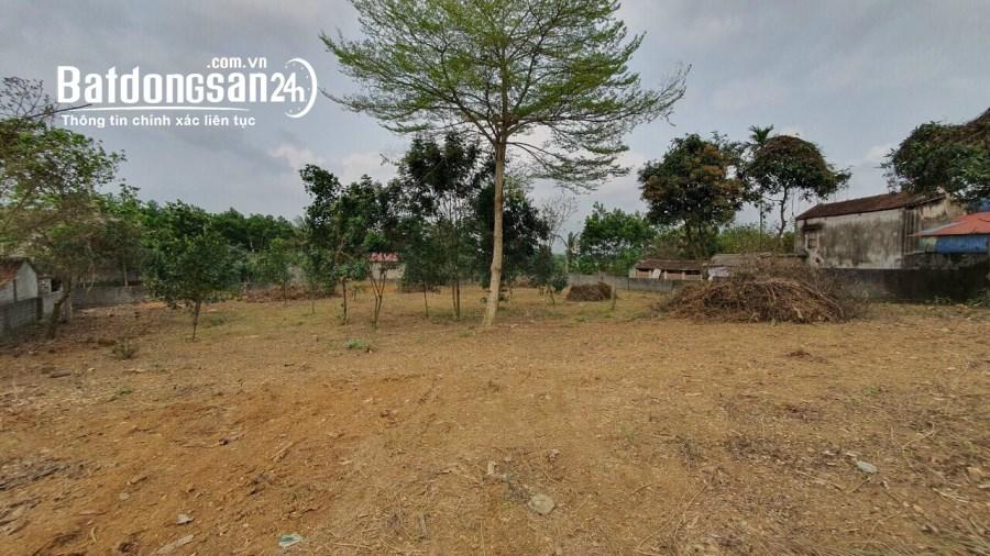 Bán đất Xã Cư Yên, Huyện Lương Sơn