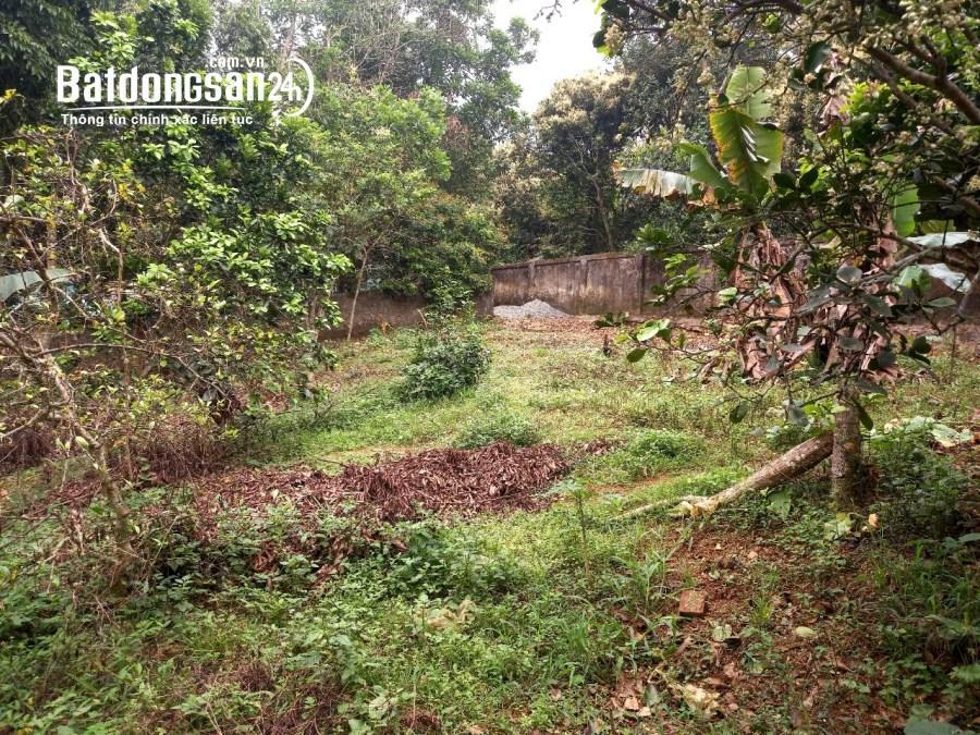 Bán đất có diện tích 2552m2 trong đó có 400m2 thổ cư tại Xã Lâm Sơn,hòa bình