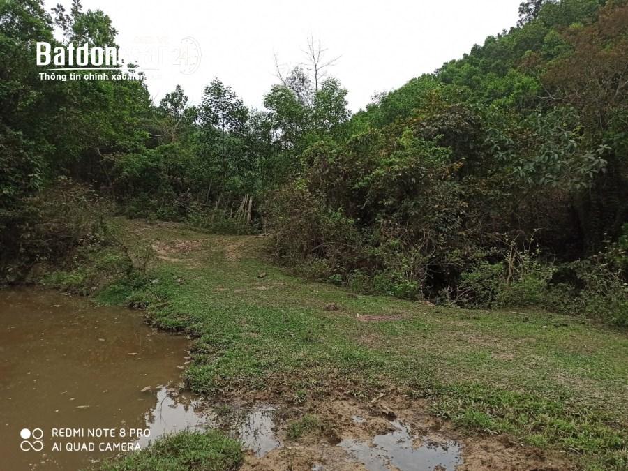 Bán 50 ha đất cạnh hồ dụ ,Đường 6, Xã Mông Hóa, Huyện Kỳ Sơn, tỉnh hòa bình