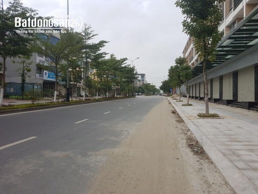 Bán Biệt Thự 275m 4 Tầng, Bể Bơi_Vườn Hoa_Khả Lễ TP Bắc Ninh_14.9 Tỷ