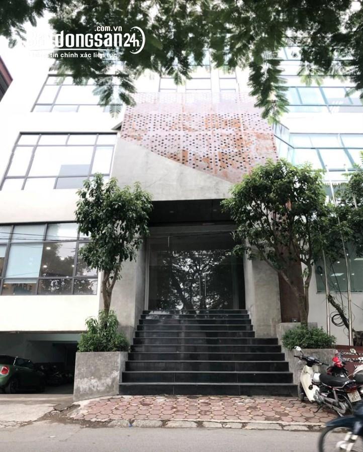 Cho thuê văn phòng Phố Hoàng Cầu, Phường Ô Chợ Dừa, Quận Đống Đa