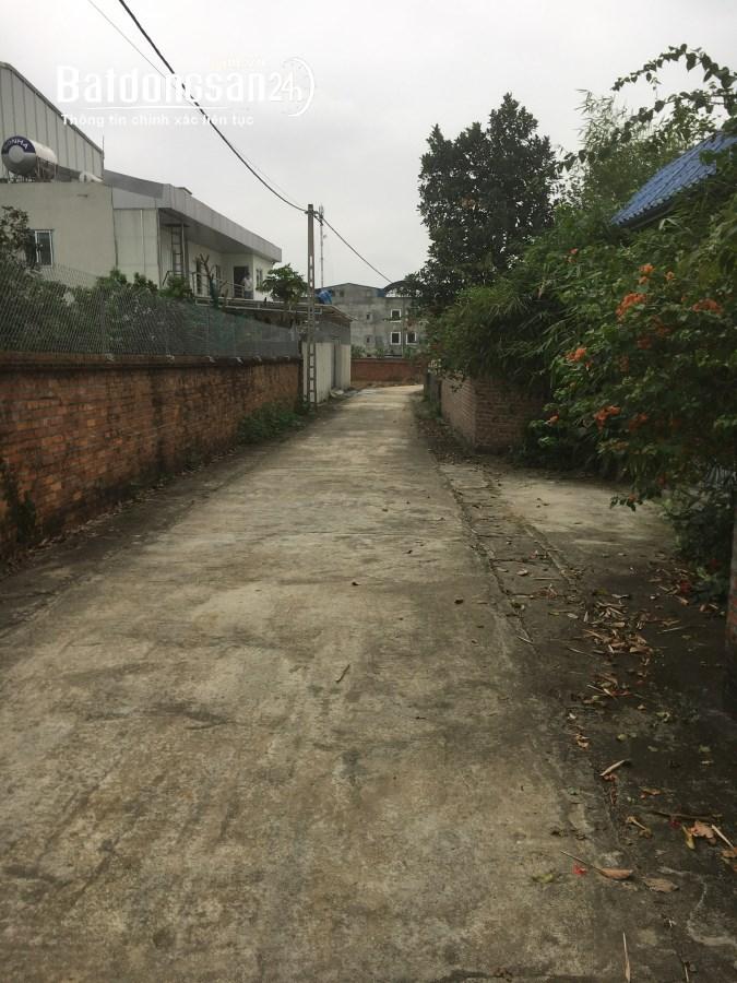 Bán đất thổ cư, đất trang trại tại Phú Cát, Quốc Oai, Hà Nội