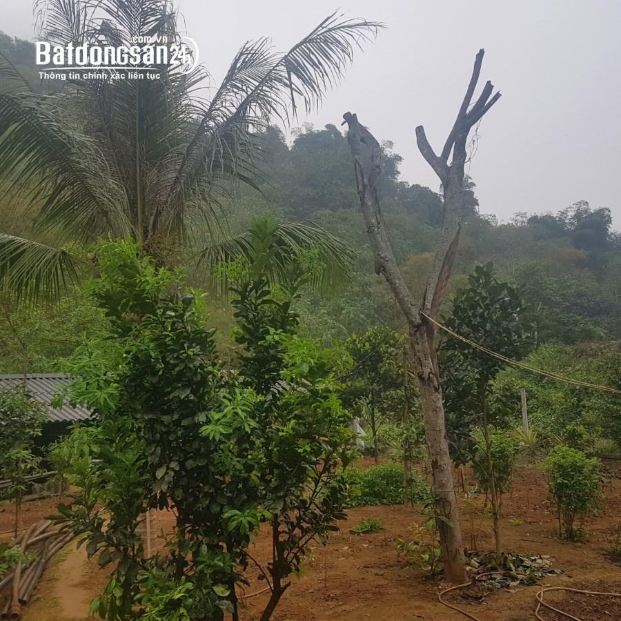 Bán đất Đường 6, Phường Thái Bình, TP -  Hoà Bình