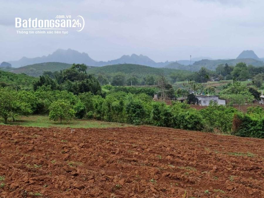 ❤❤ Cần bán một số mảnh Đất tại Cao Phong Hòa Bình thế đất rất đẹp giá rất rẻ