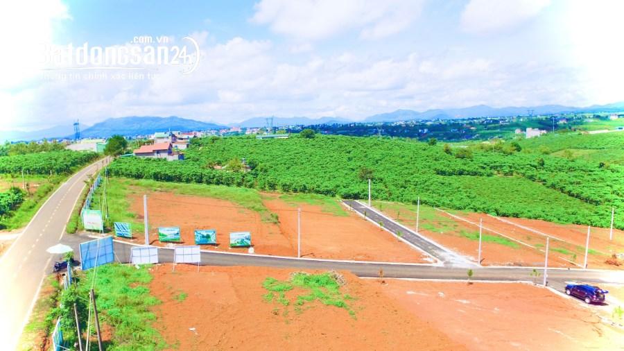 Bán đất nền View Đồi PINE VALLEY Đường Lý Thường Kiệt, Tp Bảo Lộc