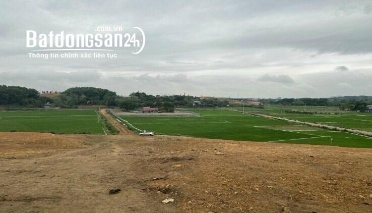 Cần bán 3700m2 đất tại Cư Yên, Lương Sơn, Hòa Bình