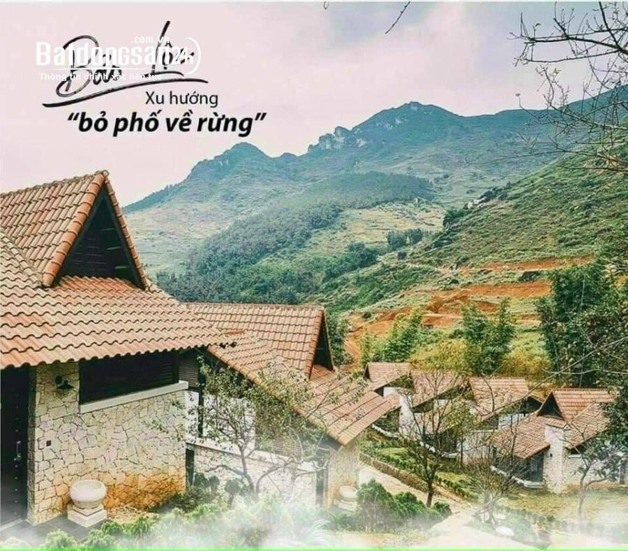 6 Lô Đất Khu Biệt Thự Nghỉ Dưỡng,1567m2,chỉ 1tr361/m2,Lộc quãng,Bảo Lâm,Lâm Đồng