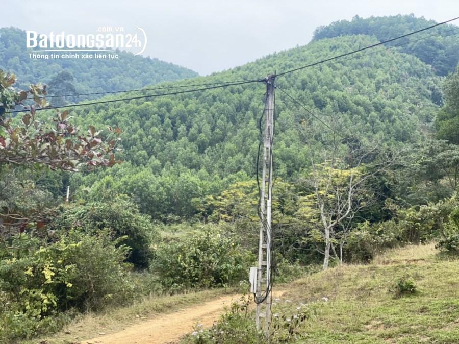 Bán đất làm khu nghỉ dưỡng Lương Sơn, Hòa Bình