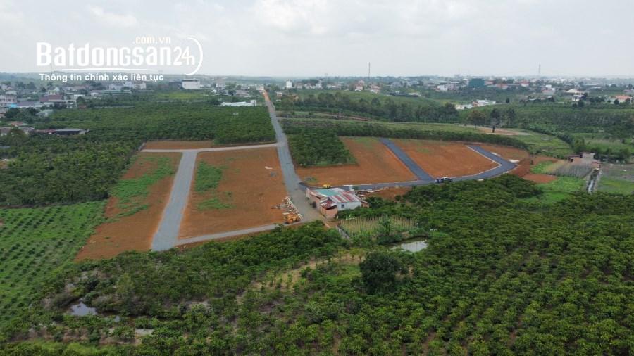 500m2 đất sổ hồng riêng full thổ cứ 100% khu dân cư tiện ích gần kề