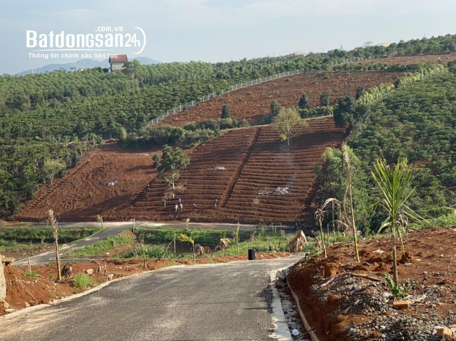 Đất biệt thự nghĩ dưỡng lộc an,Lâm đồng,200m2 giá 2,7tr/m2.view đồi chè.