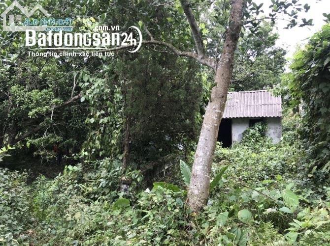 Bán đất Đường 6, Xã Mông Hóa, Huyện Kỳ Sơn